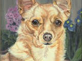 Oil portrait painting of a small dog named Belle Star by Lee Mims.